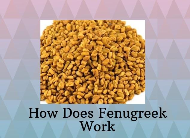 how does fenugreek work